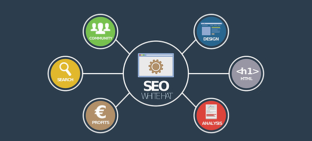 Il Digital Content Management + SEO